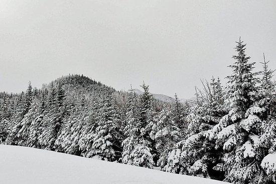 A magical winter day in Rila mountain