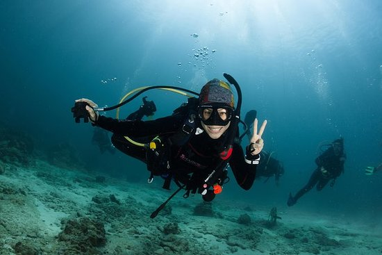 Prova Scuba Diving a Koh Tao Thailand