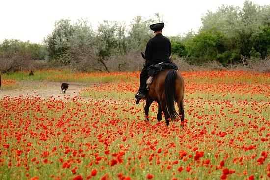Montar a caballo en la Puszta...