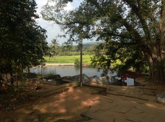 Thirumandhamkunnu Bhagavathy Temple صورة فوتوغرافية