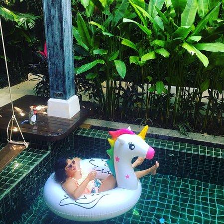 Siam dream