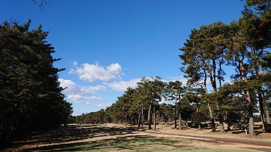 Murasaki Country Club Murasaki Ayame Course