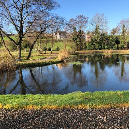 Aughnacloy, UK: A few of the views and some of the breakfast at Ashbrook House B&B