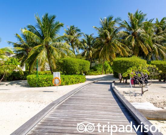Pas Le Plus Bel Environnement Des Maldives   Avis De Voyageurs Sur Holiday  Inn Resort Kandooma Maldives, Kandoomaafushi Island   TripAdvisor