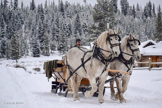 Elkhorn Ranch Sleigh Ride Dinner