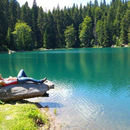 Mojkovac, Μαυροβούνιο: Zabojsko Lake