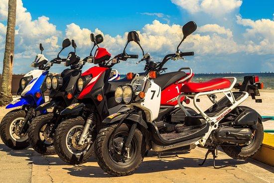 Joy Rider Rentals