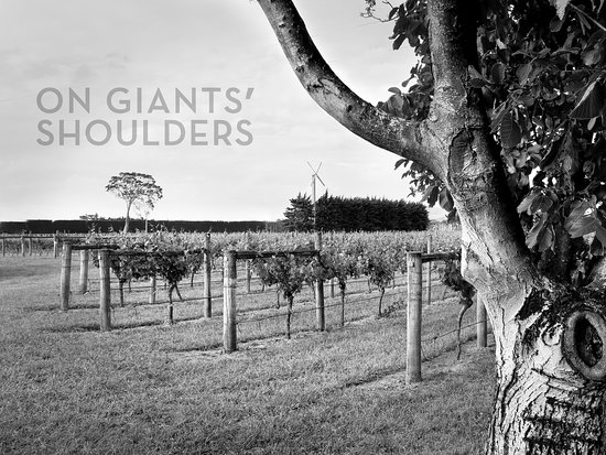 On Giants' Shoulders