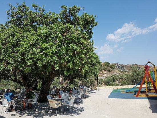 Barbacoa Jairo: Gran terraza donde poder degustar tranquilamente de nuestra gastronomía, mientras los niños se divierten en nuestro parque.