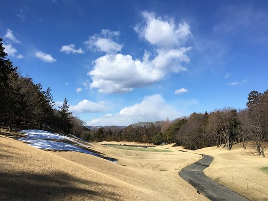 Adonis Ogawa Country Club