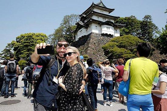 東京皇宮照亮國家許可指南