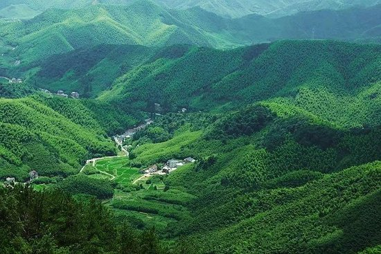 Huzhou - Mogan Mountain