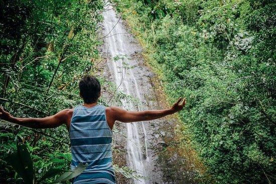 Natur und Du: Manoa Falls Hike