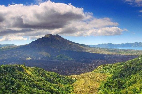 Todos Ubud: Monkey Forest, Volcano...