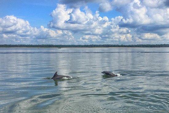 Hilton Head Island Private Delfin Tour