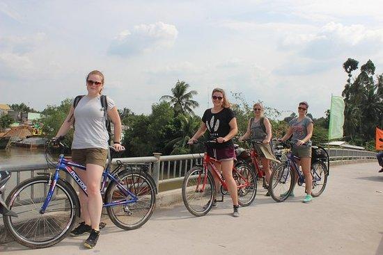 Privat Non-Touristy Mekong Delta med...
