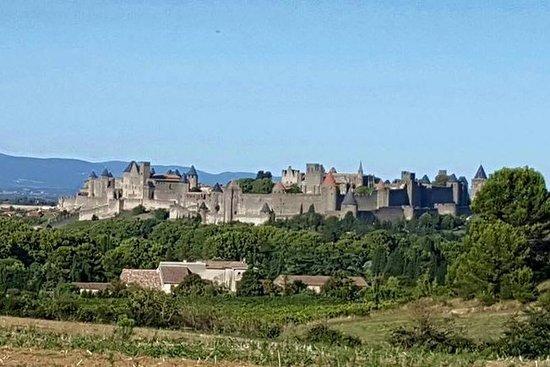 Heldagstur til Cité de Carcassonne og...