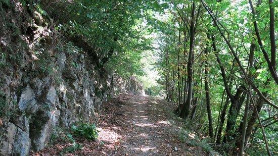 Laveno-Mombello, Italy: Da Laveno a Cittiglio via Pizzoni e Sasso del Ferro