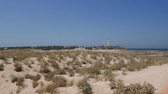 Province of Cadiz, Spain: faro di cabo trafalgar