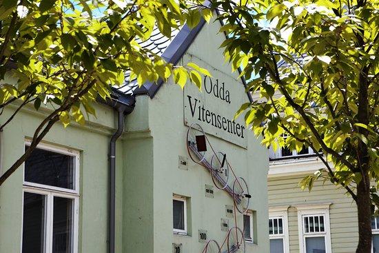 Odda, Norge: getlstd_property_photo