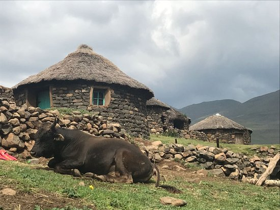 Major Adventures The Sani Pass Specialists: Village at Makhupung