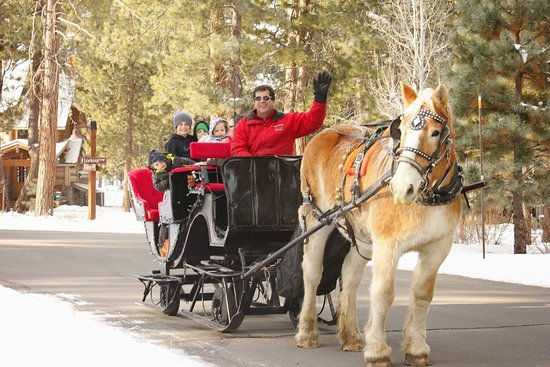 Borges Sleigh and Carriage Rides