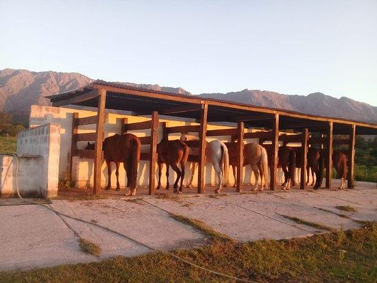 Ampascachi Horse Riding Holidays