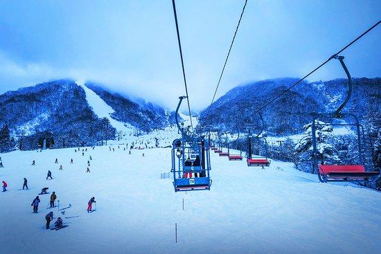 白馬雪龍中文滑雪學校
