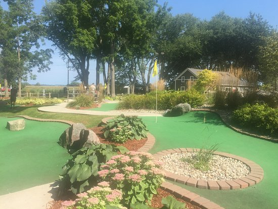 Caddy Shack Mini Golf