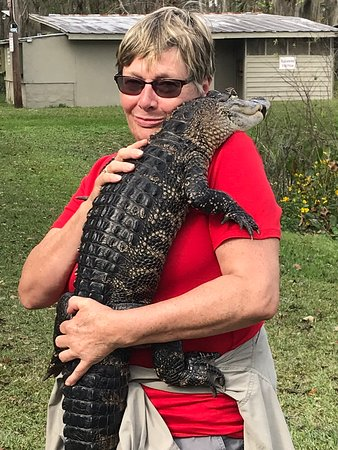 1-Hour Airboat Tour on Lake Panasoffkee: To hold a living dinosaur ... amazing