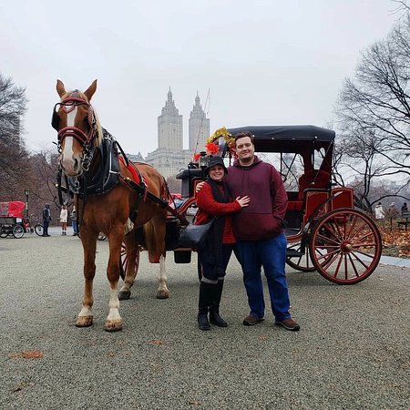 Central Park Carriage Rides - NYC Horse Carriage Rides EST.1979