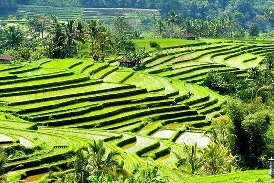 Sitio de turismo de la UNESCO y Templo...