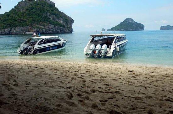 Excursion VIP du parc marin...