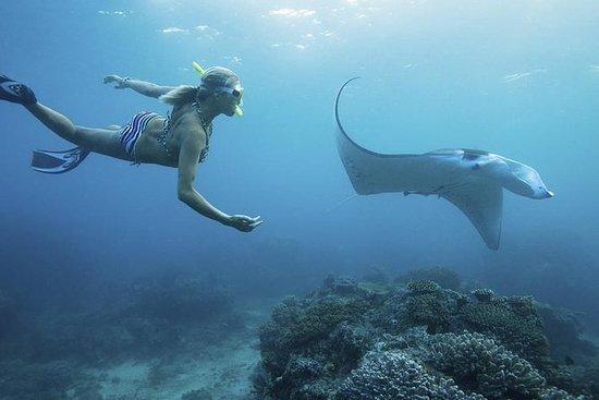 Nusa Penida Island Strandtur med ...