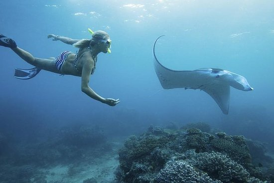 Nusa Penida Tour com Snorkeling...