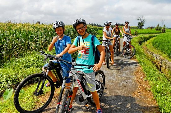 South Ubud E - Bike and Ayung River...