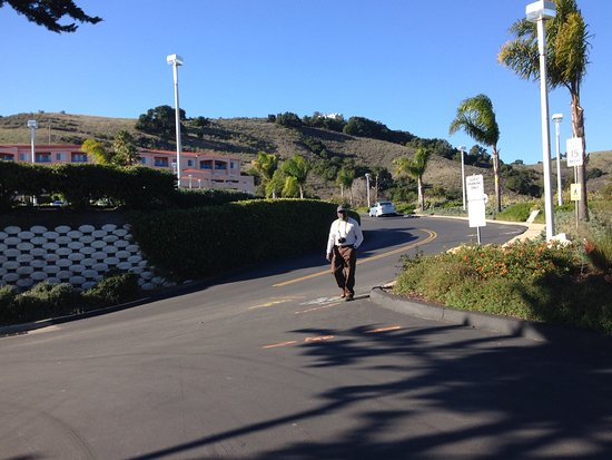 A short walk down/up the driveway/road from the resort to Avila Beach/Pier restaurants.