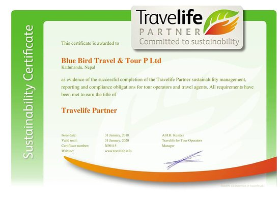 Blue Bird Travel and Tours