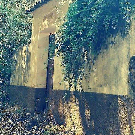 Constantina, Spain: Caminando por el Sendero de los Castañares