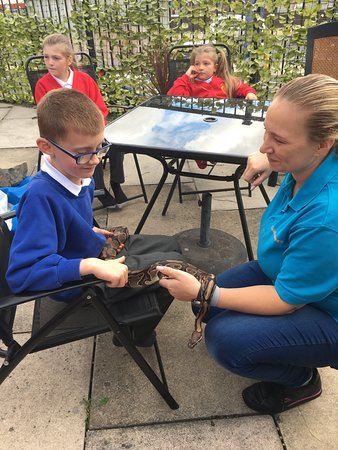 West Yorkshire, UK : Petting Zoo came to Sensory World in Dewsbury
