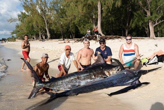 Maranatha Big Game Fishing (Le Morne) Aktuelle 2020