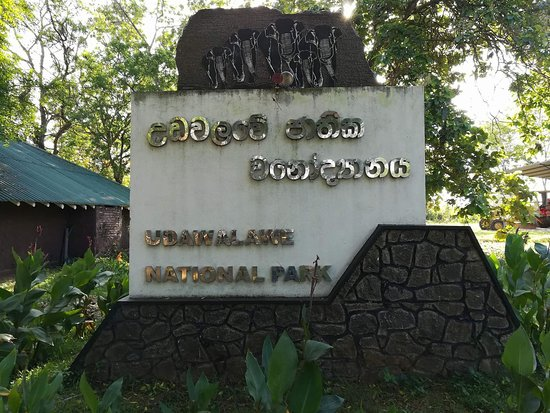 Uda Walawe National Park, Σρι Λάνκα: Udawalawa Wild Safari