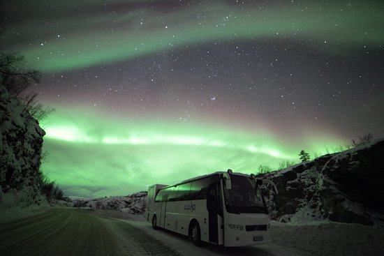 Alta, Noorwegen: Northern lights all around us!
