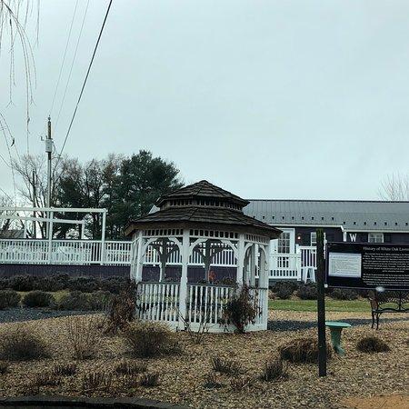 White Oak Lavender Farm & The Purple WOLF Vineyard