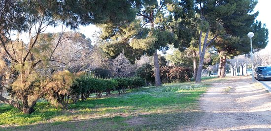 Jardins De Maria Canardo Lacasta