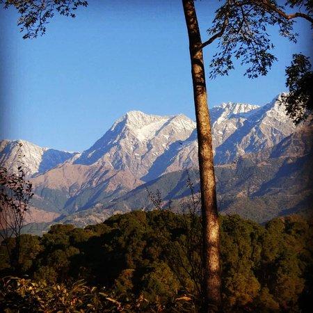 Himalayan Adrenaline