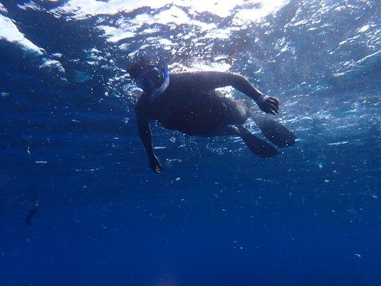 Honduras: Beautiful day for snorkeling