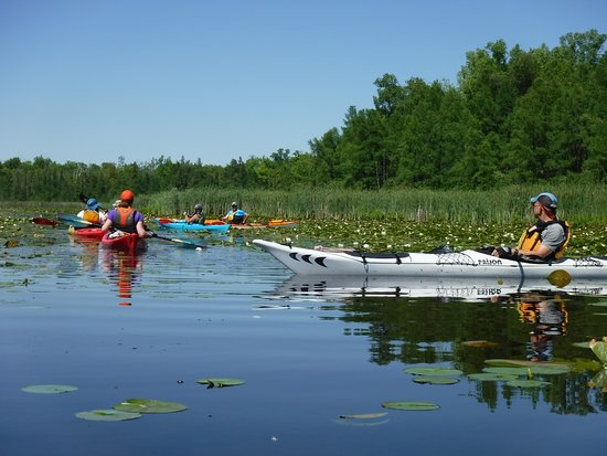 Green Lake, WI: Big Cedar Lake, just outside West Bend, Wi offers just one of the more enjoyable areas to paddle.