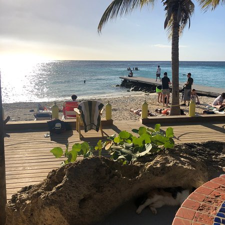Fotografia de Playa PortoMari