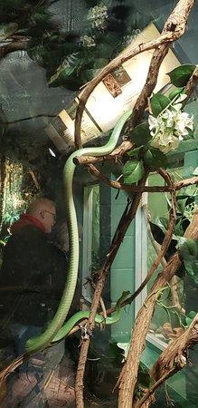 Columbus Zoo and Aquarium